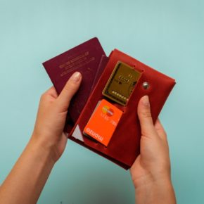 leather family passport holder